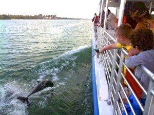 Pure Florida Cruise