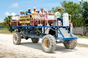 Wooten's Swamp Buggy Tour