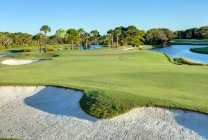 gator-course-at-pelicans-nest-golf-club