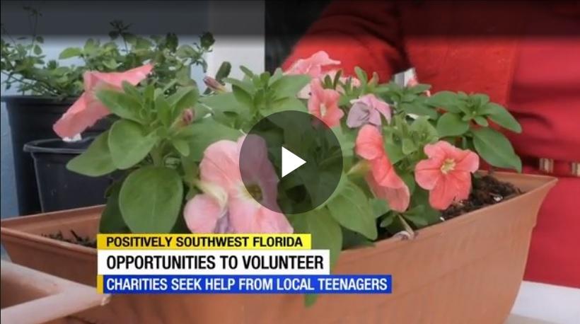 Client Headlines - Volunteer Opportunities